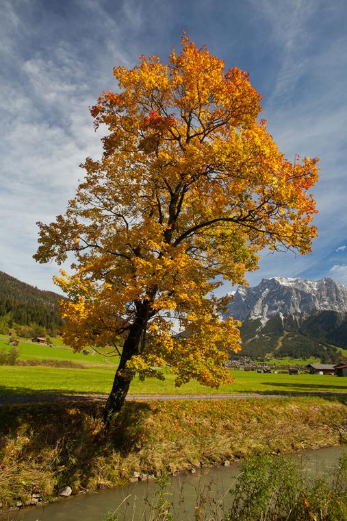 Blick von Lermoos Richtung Zugspitze