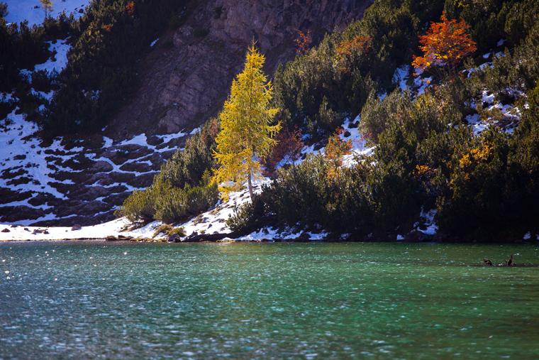 Die ersten Herbstboten am Seebensee