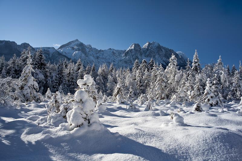 traumhaft verschneite Landschaft