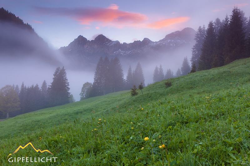 Tannheimer Tal mit Blick auf die Gehrenspitze