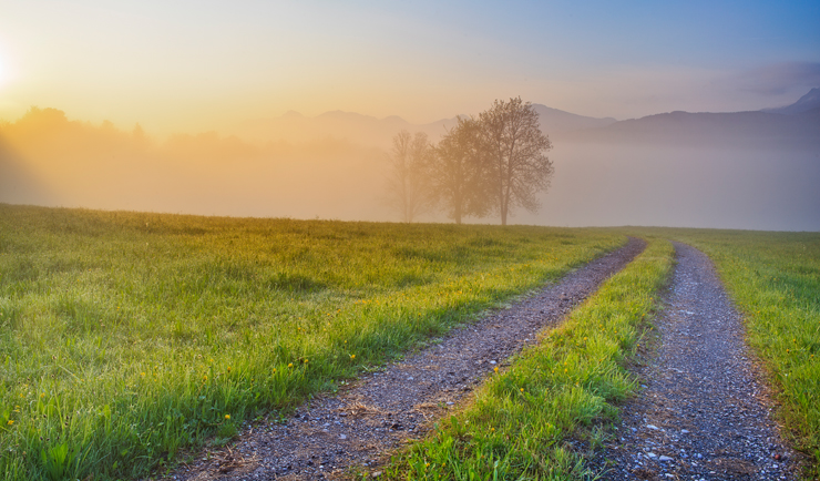 Langsam kämpft sich die Sonne durch den Nebel