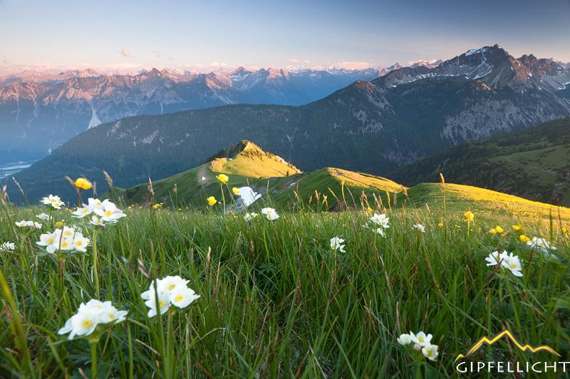 sonnenuntergang mit blick in die lechtaler alpen
